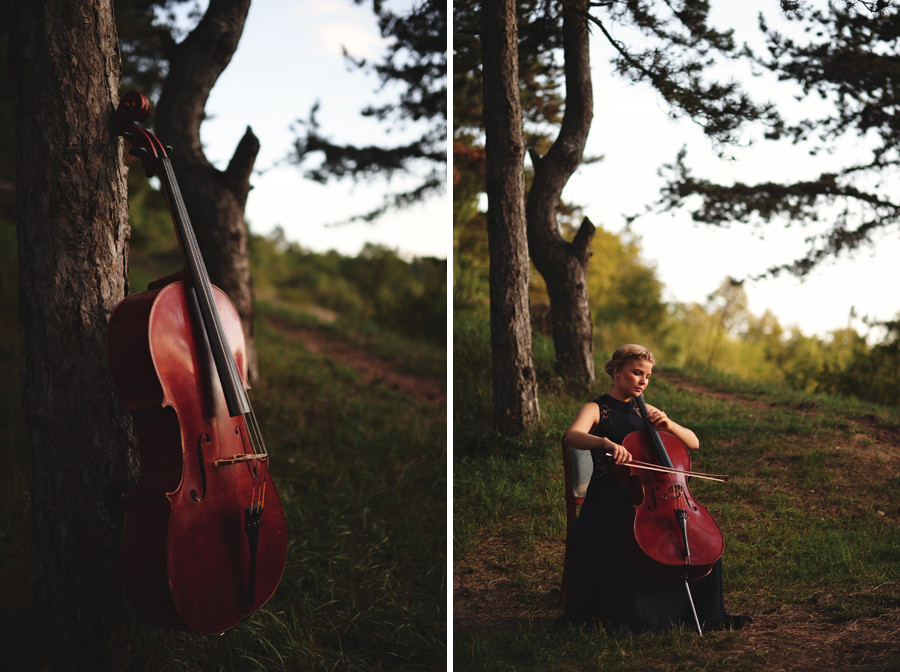 cello in the nature and musician portrait near Budapest - Zácsfalvi Gyula