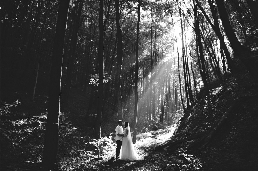 wedding couple in a forest with light streak