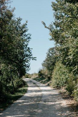 Balaton földes út